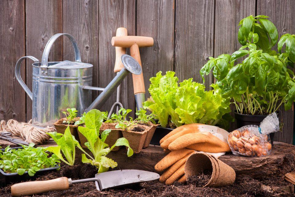 Southern Home & Garden Show