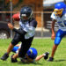 Everything A Parent Should Know About Little League Football